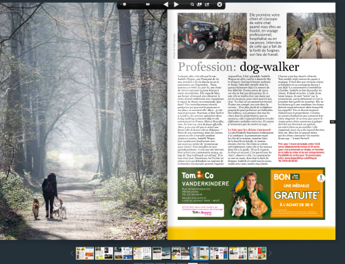 Dog Walking & Cat sitting sur le Wolvendael