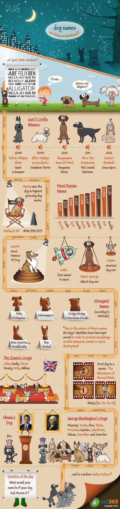 dog name infographie